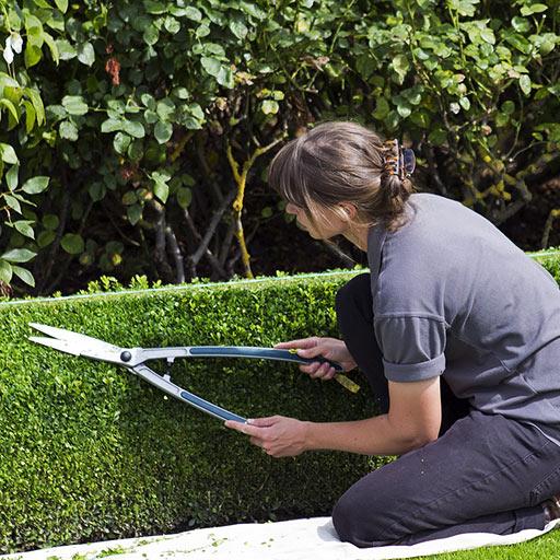 Garten- &  Hausmeisterdienst